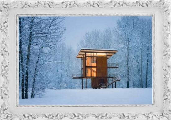 Contemporary Cabin_2